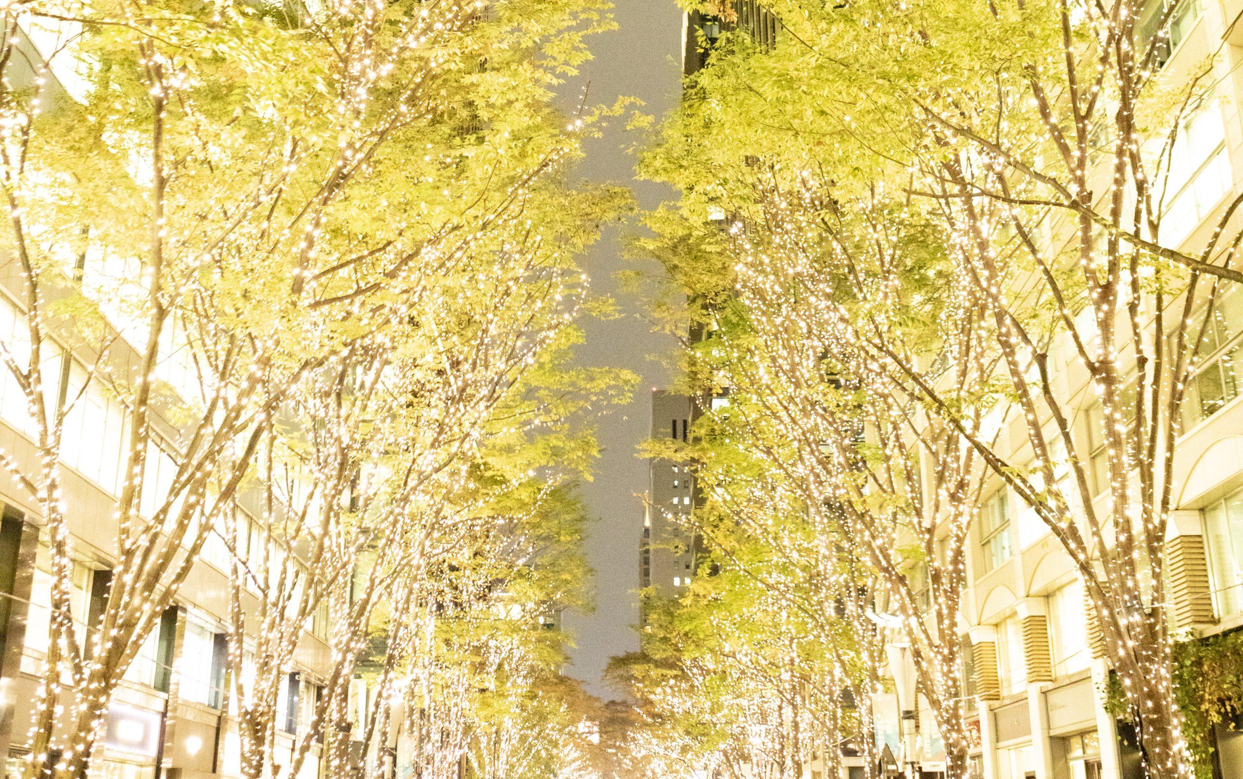 Marunouchi Happ.stand&gallery 12月1日(火)〜12月25日(金)Discover Marunouchi Special Christmas with Marunouchi Happ.を開催!
